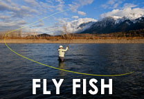Fly Fish Gear