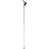 Swix TBS Premium Composite Ski Pole