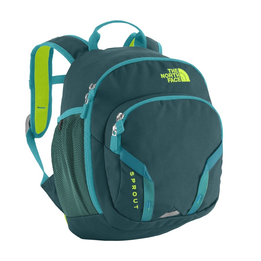 6a820abee The North Face Youth Sprout 10 Liter Backpack