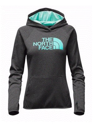 The North Face Women S Fave Half Dome Pullover Hoodie