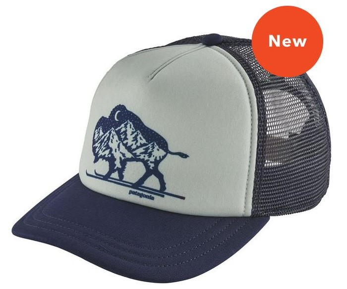 dfd62aad75fa3 Patagonia Women s Nordic Bison Interstate Hat