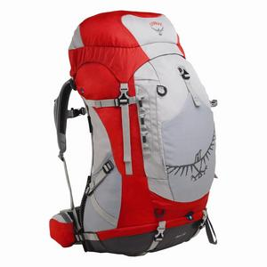 Youth Ace 48 Backpack